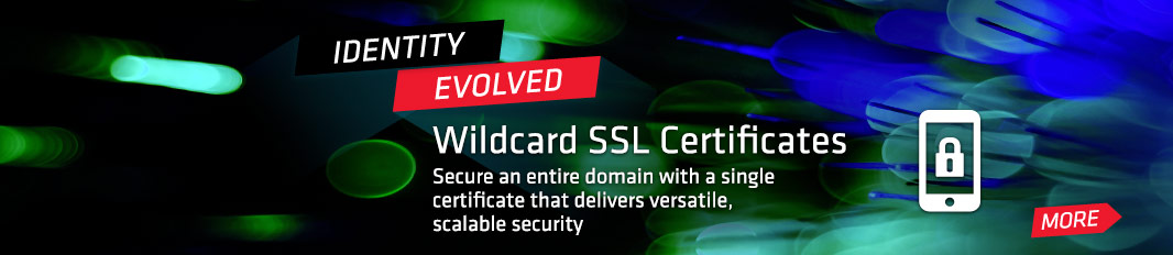 Wildcard SSL Certificates: Secure an entire domain with a single certificate that delivers versatile, scalable security
